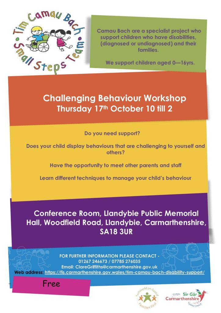 thumbnail of Tim Camau bach challenging behaviour poster