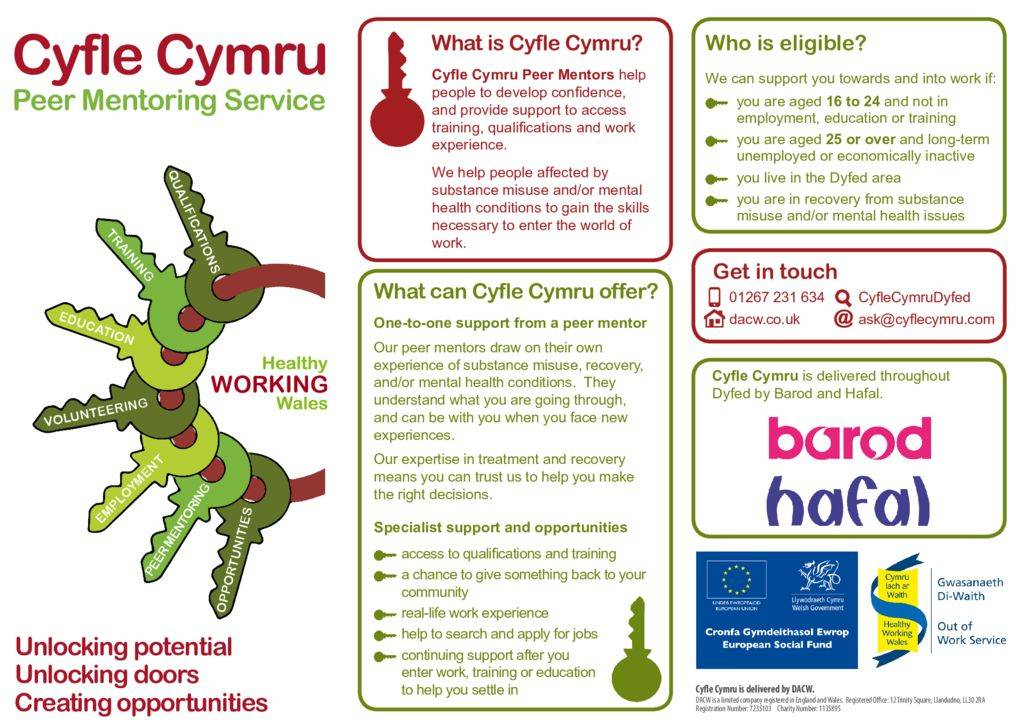 thumbnail of NEWEST DYFED LEAFLET (2)