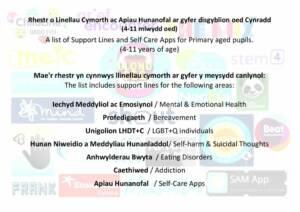 thumbnail of Llinellau Cymorth ar gyfer Disgyblion yr Ysgol Gynradd – Support Lines for Primary aged Pupils CORRECT Cynllun Ysgolion Iach 8.6.20