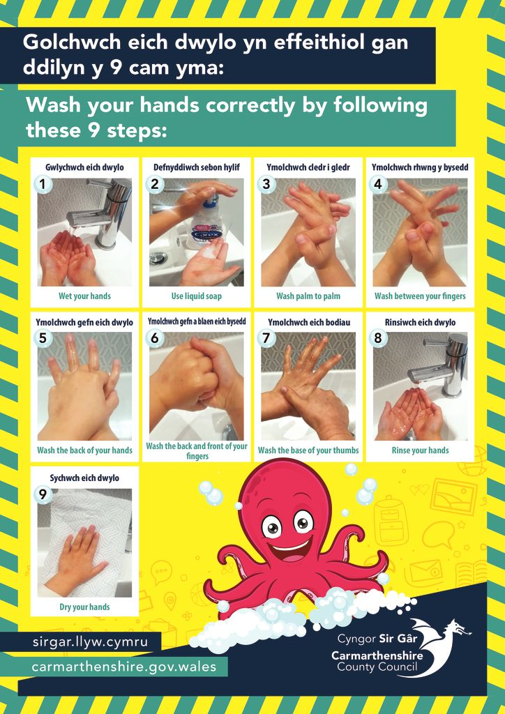 thumbnail of SD0079_schools_hand_washing_guidance_younger