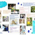 thumbnail of Dewch i chwarae a dysgu – dwr
