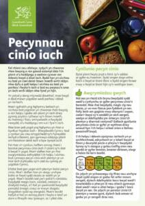 thumbnail of Welsh Government 190219 Healthy Lunchboxes Leaflet – Welsh